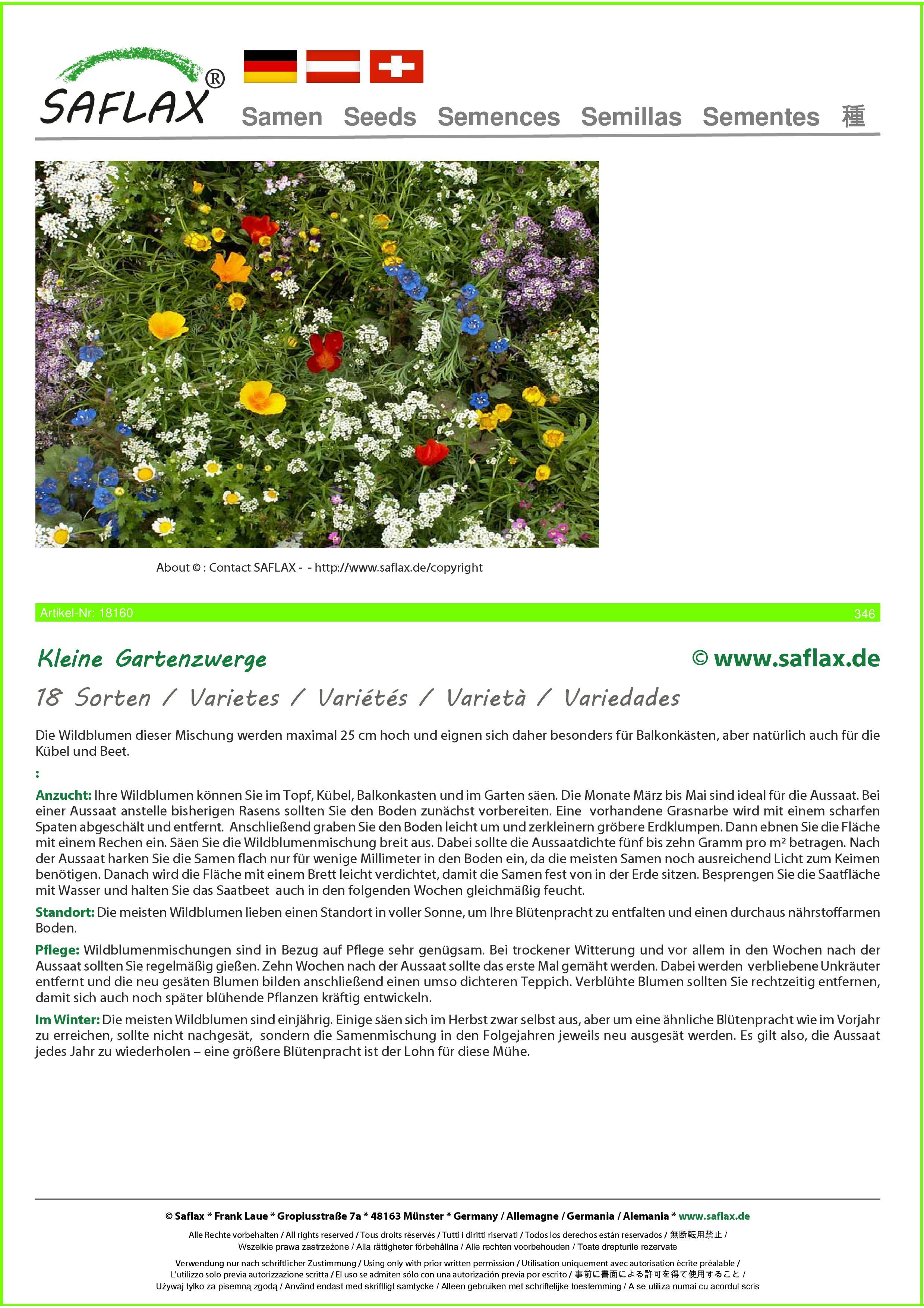 Wildblumen: Kleine Gartenzwerge 1000 Samen SAFLAX 18 Sorten